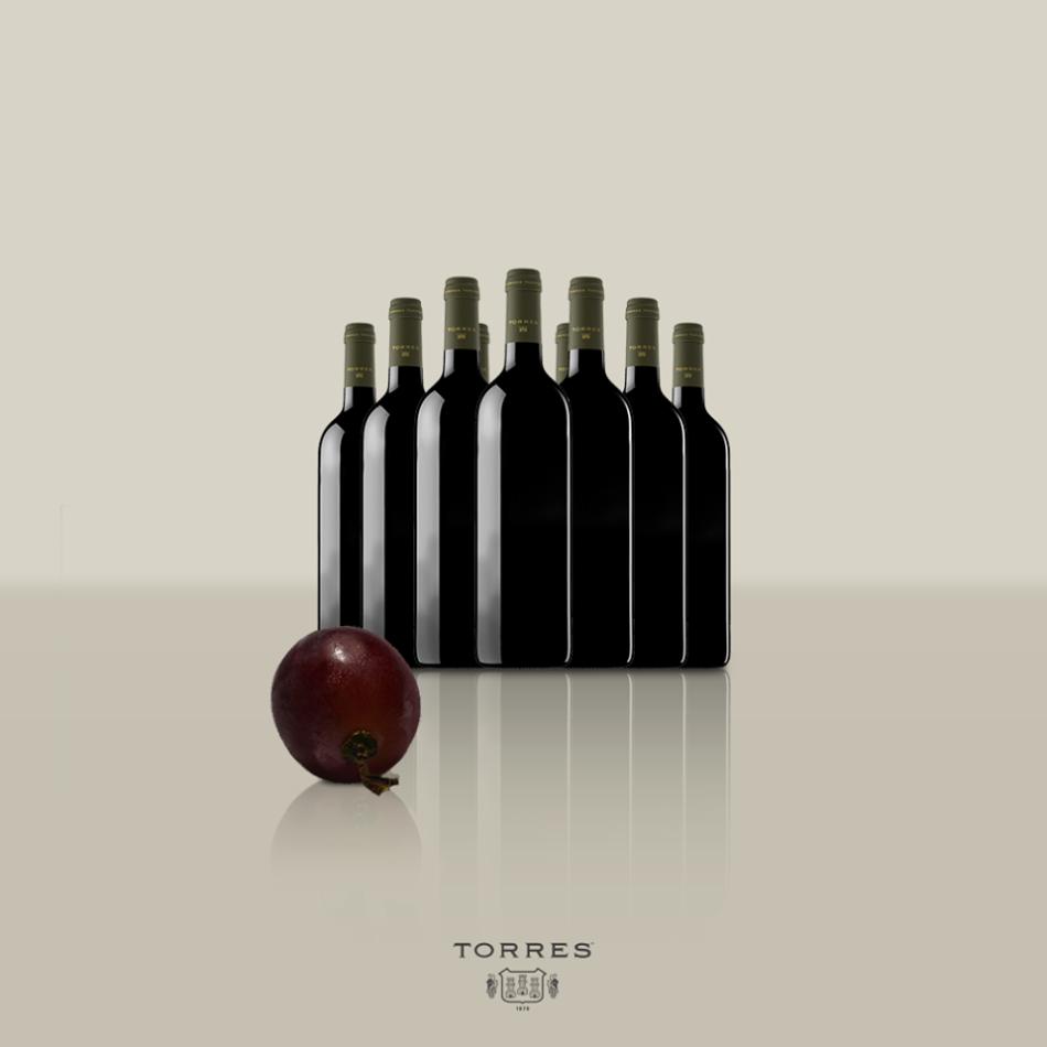 torres7