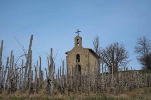 Hermitage enoturismo rhone la chapelle